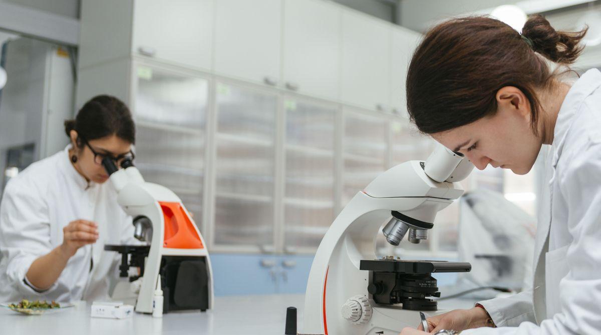 Chuyên gia nghiên cứu công nghệ Nano