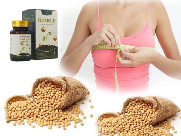 Mầm đậu nành giúp tăng vòng 1 như thế nào bạn đã biết chưa?