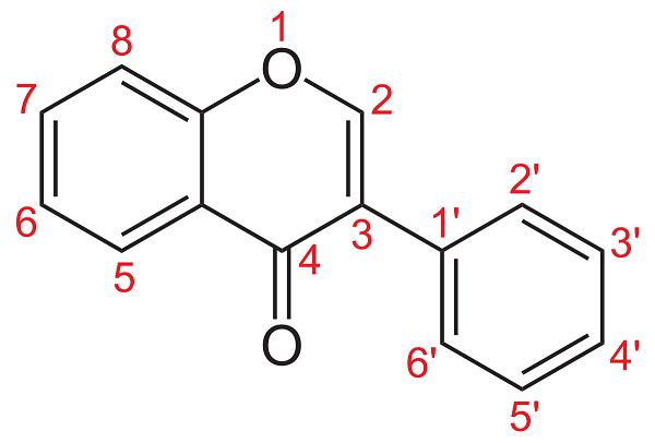 Isoflavonoid là gì?