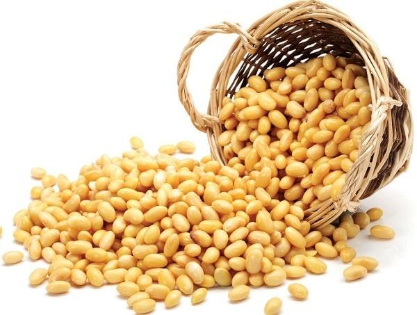 Cách làm bột mầm đậu nành khô