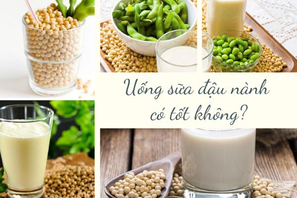 uống sữa đậu nành thường xuyên có tác dụng gì, uống đậu nành thường xuyên có tốt không, có nên uống sữa đậu nành thường xuyên, uống nước đậu nành thường xuyên có tốt không, uống mầm đậu nành thường xuyên có tốt không, uống sữa đậu nành mỗi ngày có tốt không