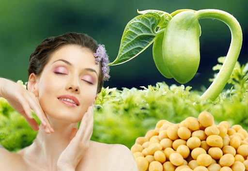 Mầm đậu nành giúp chống oxy hóa và làm chậm quá trình lão hóa da