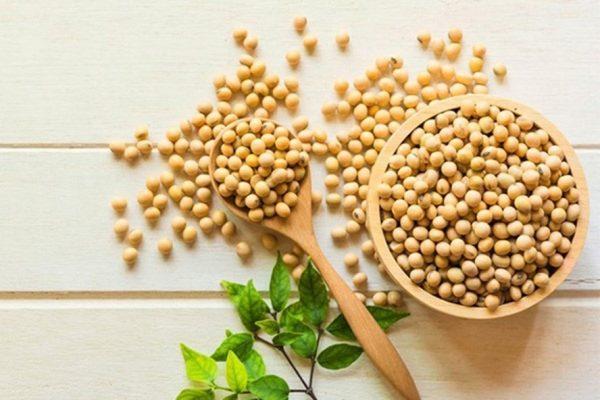 Đậu nành chứa nhiều thành phần dinh dưỡng có lợi cho sức khỏe