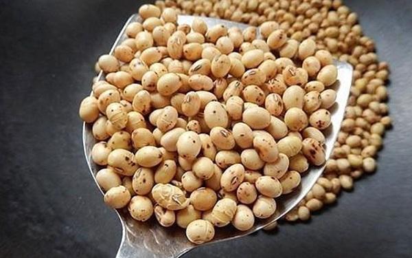 Cách làm bột mầm đậu nành nguyên xơ