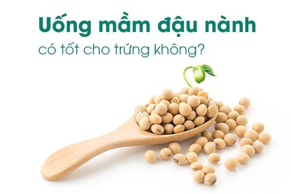 mầm đậu nành tăng khả năng thụ thai, mầm đậu nành giúp tăng khả năng thụ thai, tinh chất mầm đậu nành tăng khả năng thụ thai, uống mầm đậu nành có tăng khả năng thụ thai