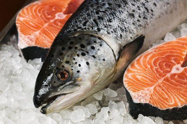 Tăng cường ăn cá để bổ sung omega-3