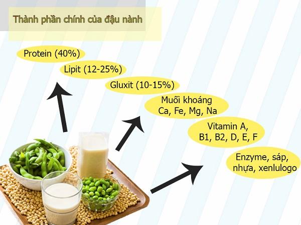 Mầm đậu nành bao nhiêu calo? Giá trị dinh dưỡng trong mầm đậu nành
