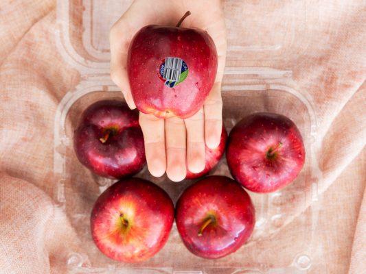 Quả táo giúp việc tiêu hóa được diễn ra nhanh hơn