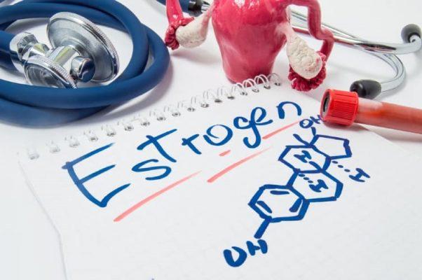 Rối loạn nội tiết tố được cho là nguyên nhân chính gây u xơ tử cung