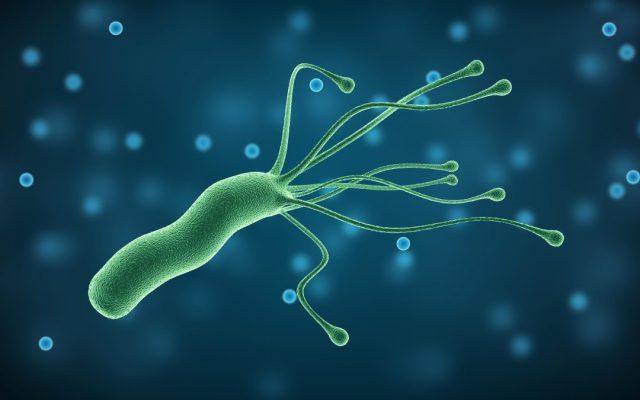 Khuẩn Helicobacter Pylori là nguyên nhân gây nên bệnh lý về dạ dày, tá tràng